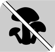 Защита от грибков плесени