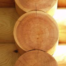 Как продлить срок службы деревянных изделий на 20 лет?