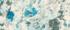 №407 Нептун