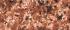 №410 Марс