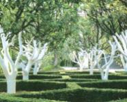 Краска акриловая для садовых деревьев